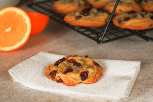Cranberry Orange Chocolate Chip Cookies ~ Annie's Cooking Lab